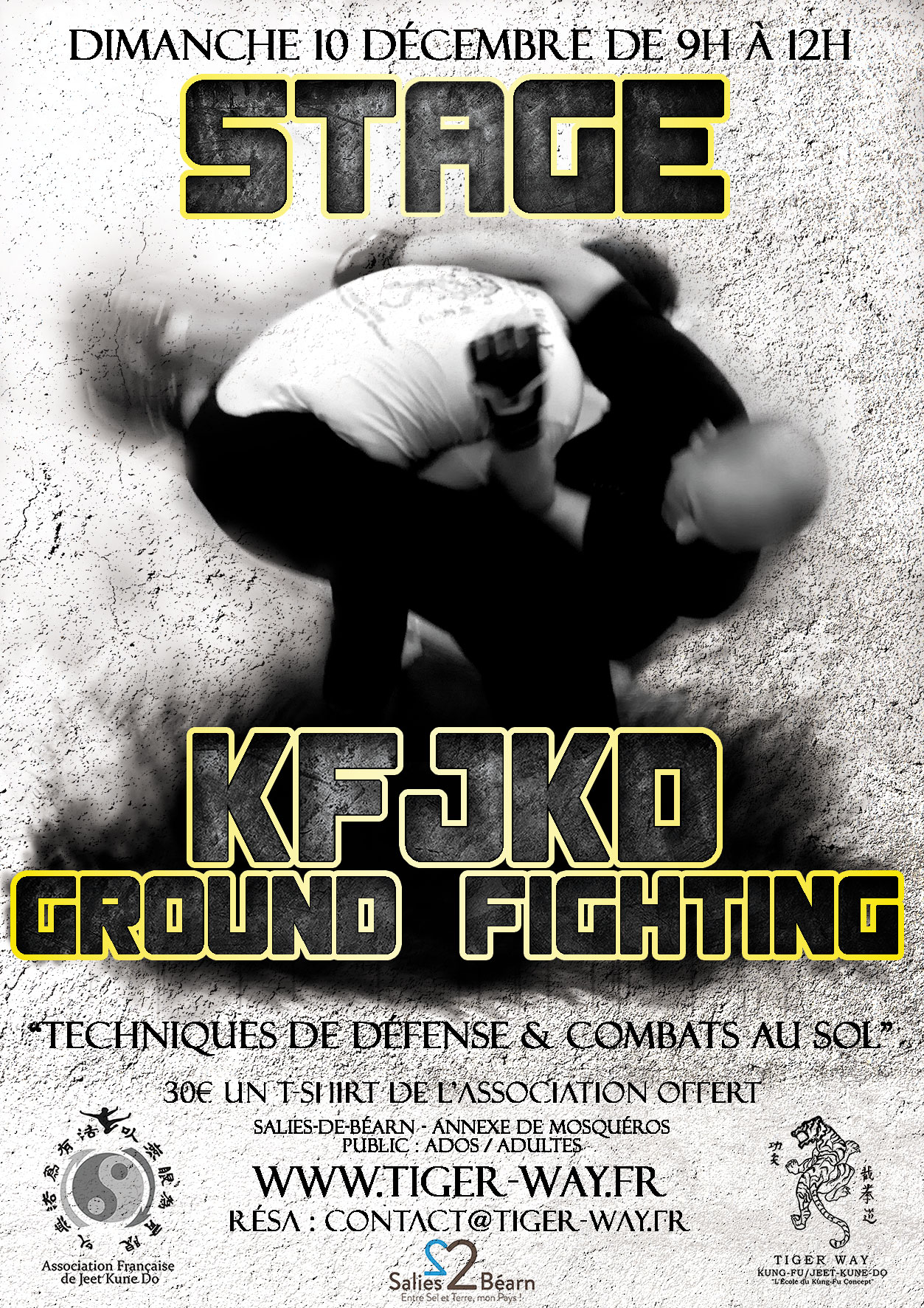 Stage – Ground Fighting 10 décembre 2017