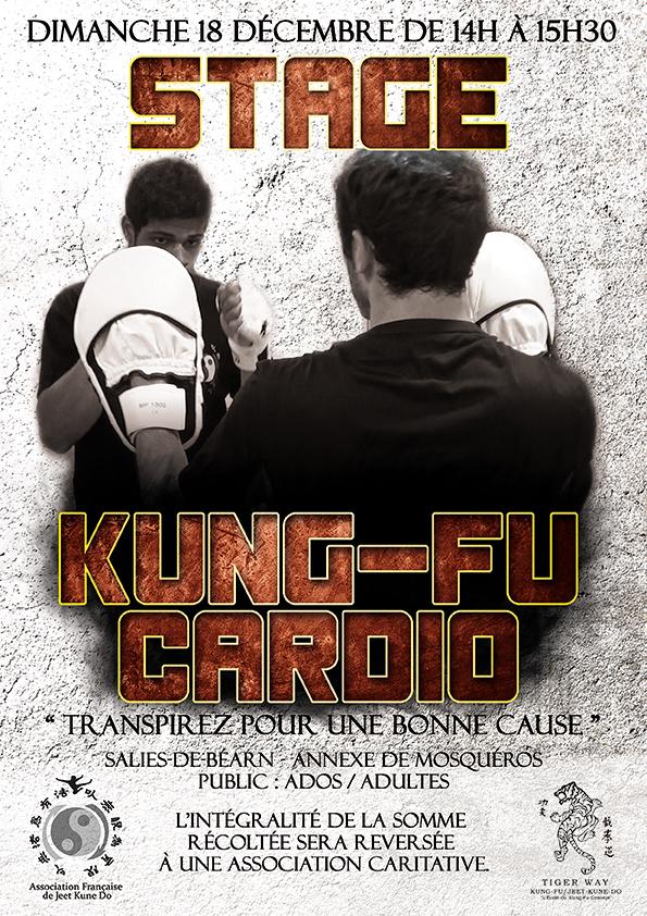 Stage kung-Fu Cardio – Salies